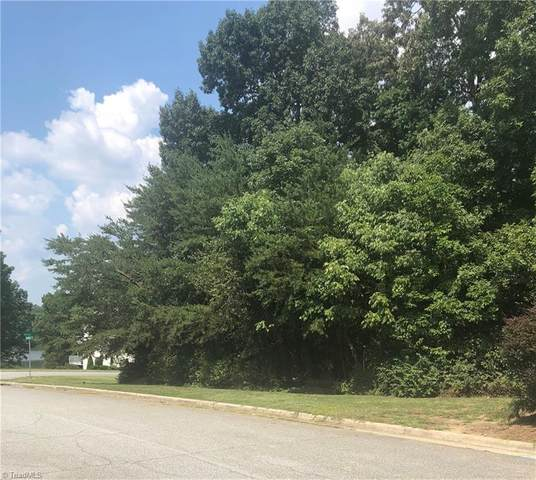 2202 Delaine Point, High Point, NC 27265 (#1039806) :: Mossy Oak Properties Land and Luxury