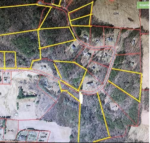 TBD Pat Irwin Road, Pilot Mountain, NC 27041 (MLS #1040773) :: Ward & Ward Properties, LLC