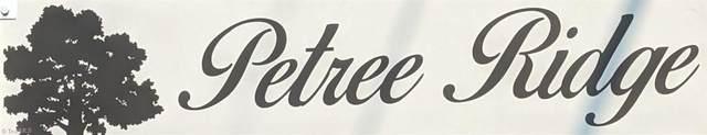 528 Petree Knoll Court, Winston Salem, NC 27106 (MLS #1042346) :: Ward & Ward Properties, LLC