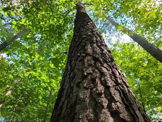 00 Grassy Knob Road, Pilot Mountain, NC 27041 (MLS #1042406) :: Berkshire Hathaway HomeServices Carolinas Realty