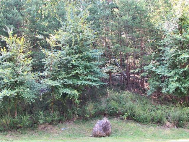 423 Rocky Cove Lane, Denton, NC 27239 (MLS #1043130) :: Berkshire Hathaway HomeServices Carolinas Realty
