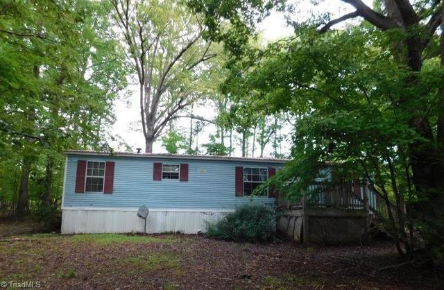5337 Cucumber Branch Road, Snow Camp, NC 27349 (MLS #1044558) :: Ward & Ward Properties, LLC