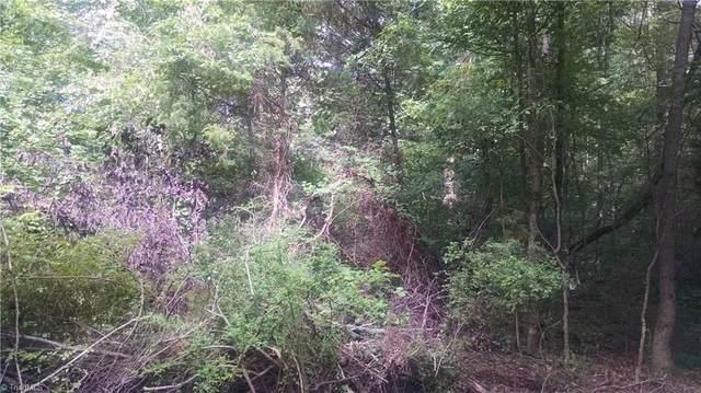 0 Tot Hill Farm Road, Asheboro, NC 27205 (MLS #1045246) :: Berkshire Hathaway HomeServices Carolinas Realty