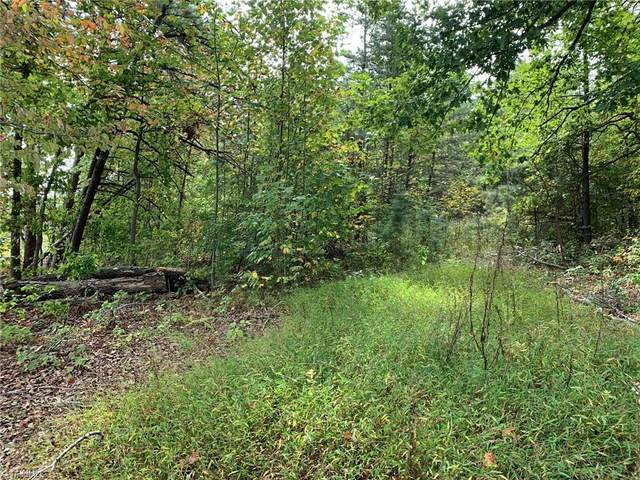 0 Mineral Springs Road, Madison, NC 27025 (MLS #1046120) :: Witherspoon Realty