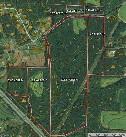 00 Surry Gadsberry Road #2.5, Pilot Mountain, NC 27041 (MLS #1046219) :: Ward & Ward Properties, LLC