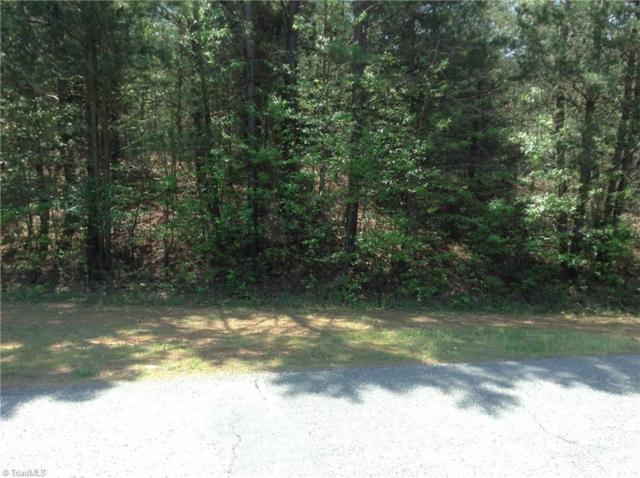 236 N Miners Trail, Lexington, NC 27292 (MLS #834744) :: Ward & Ward Properties, LLC
