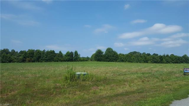 6002 Grass Field Court, Gibsonville, NC 27249 (MLS #848818) :: Kristi Idol with RE/MAX Preferred Properties
