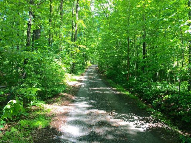 0 Peabody Road, Colfax, NC 27235 (MLS #854125) :: Lewis & Clark, Realtors®