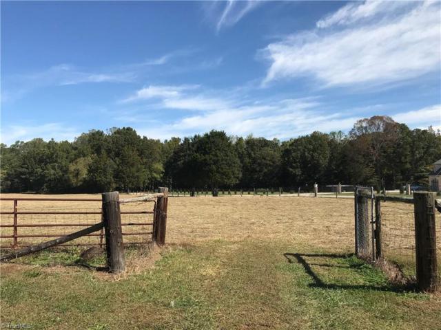 1806 Sandy Ridge Road, Colfax, NC 27235 (MLS #854621) :: Lewis & Clark, Realtors®