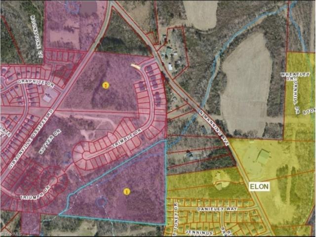 903 Gibsonville Ossipee Road, Elon, NC 27244 (MLS #861993) :: Lewis & Clark, Realtors®
