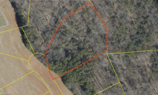 8116 Joseph Weston Court, Greensboro, NC 27455 (MLS #873678) :: Banner Real Estate