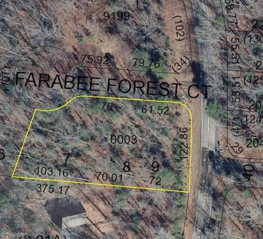 125 Farabee Forest Court, Lexington, NC 27292 (MLS #876226) :: Lewis & Clark, Realtors®