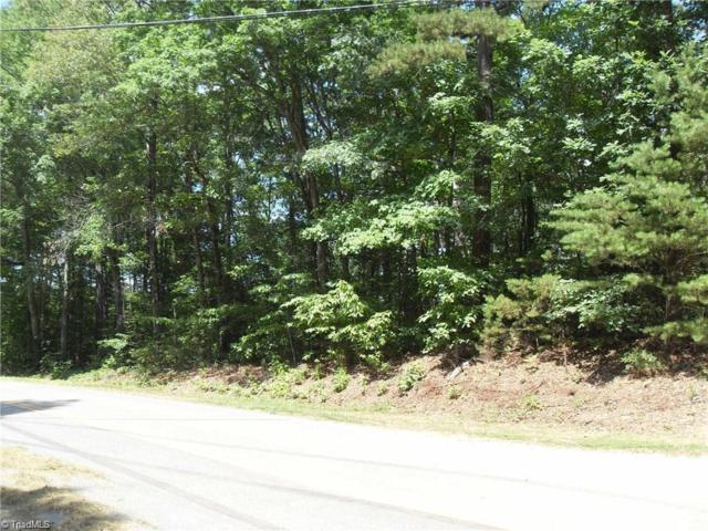 1228 Shoreline Drive, Lexington, NC 27292 (MLS #880248) :: Kristi Idol with RE/MAX Preferred Properties