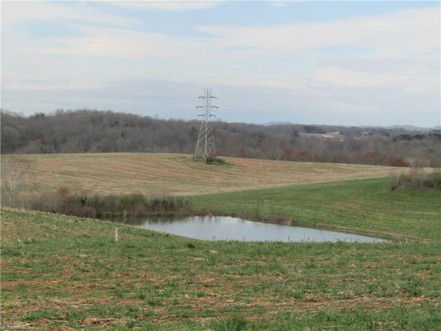 2018 Chimney Field Road, Yadkinville, NC 27055 (MLS #881383) :: Kristi Idol with RE/MAX Preferred Properties
