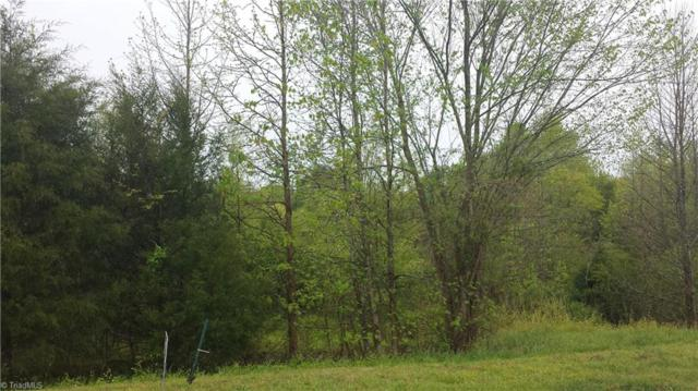 0 Griffin Drive, Ramseur, NC 27316 (MLS #883310) :: Kristi Idol with RE/MAX Preferred Properties
