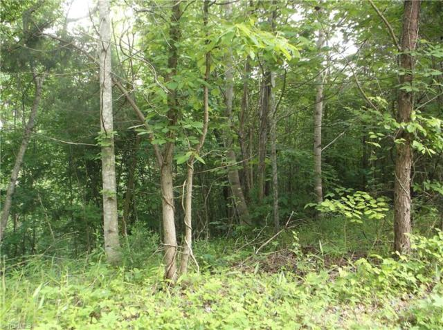 5 Thore Road, Pinnacle, NC 27043 (MLS #887777) :: Kristi Idol with RE/MAX Preferred Properties