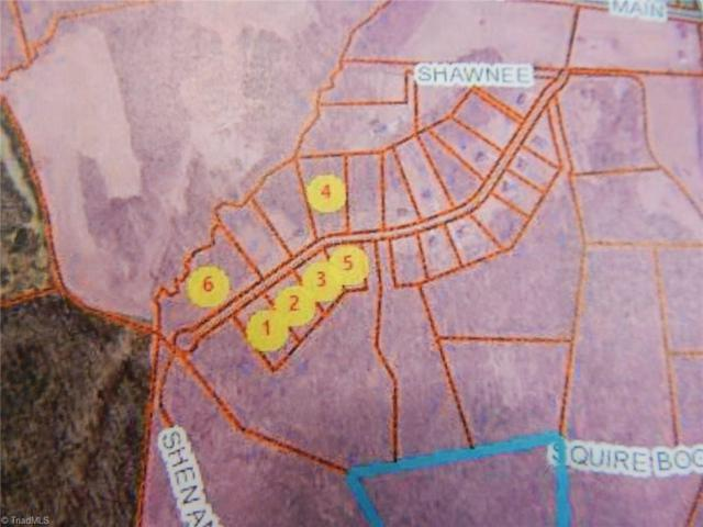 1041 Shenandoah Trail, Boonville, NC 27011 (MLS #891041) :: Kristi Idol with RE/MAX Preferred Properties