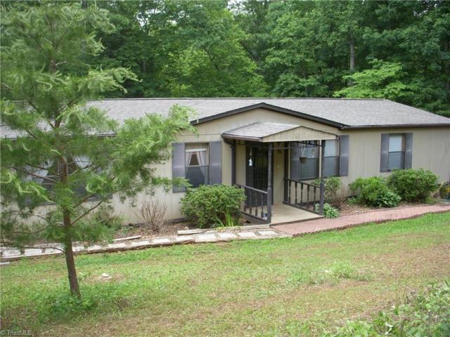 511 Abner Lane, Mount Airy, NC 27030 (MLS #891866) :: Kristi Idol with RE/MAX Preferred Properties