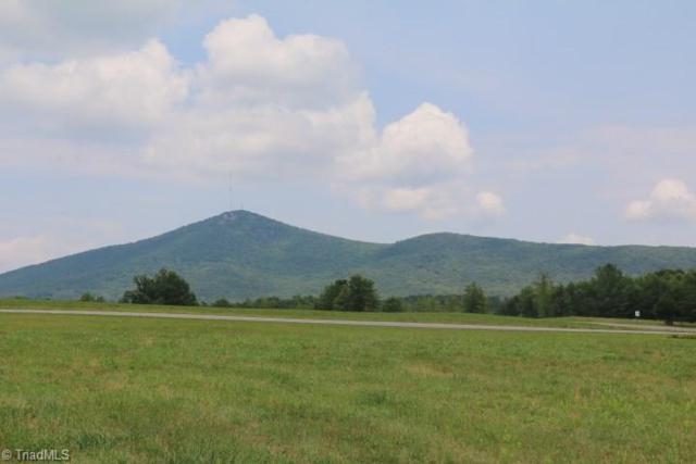0 Volunteer Road, Pinnacle, NC 27043 (MLS #895625) :: Kristi Idol with RE/MAX Preferred Properties