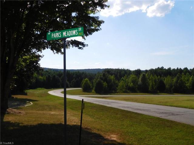 157 Madison Meadows Lane, Lexington, NC 27292 (MLS #896210) :: Kristi Idol with RE/MAX Preferred Properties