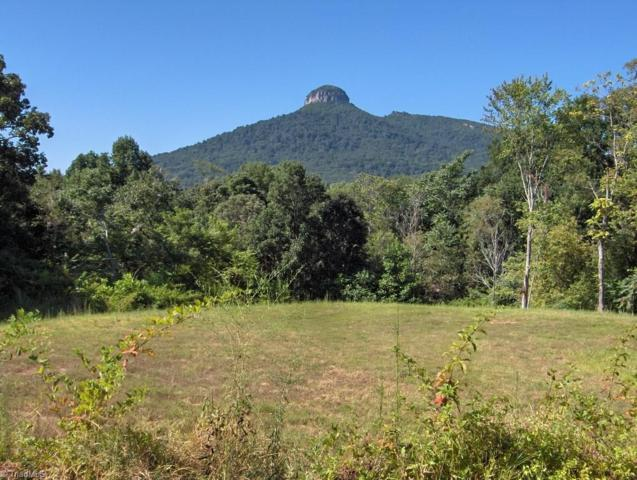 10 Black Point Lane, Pilot Mountain, NC 27041 (MLS #896433) :: RE/MAX Impact Realty