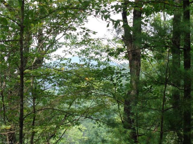 64 Grindstone Lane, Millers Creek, NC 28651 (MLS #897032) :: HergGroup Carolinas
