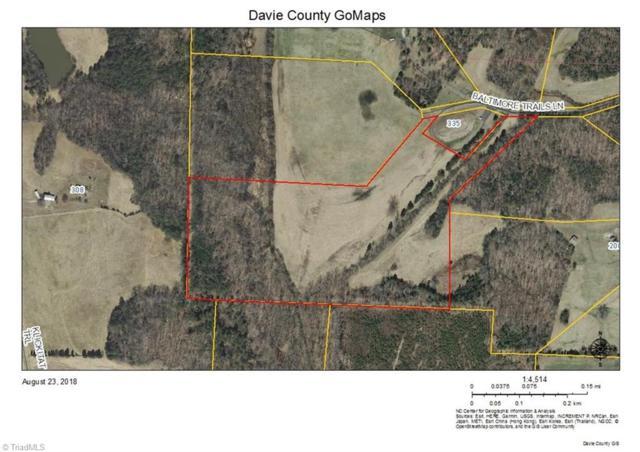 319 Baltimore Trails Lane, Advance, NC 27006 (MLS #900470) :: RE/MAX Impact Realty
