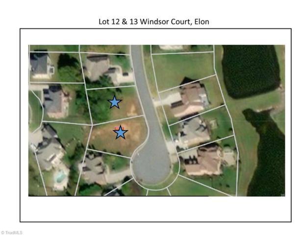 12 Windsor Court, Elon, NC 27244 (MLS #900744) :: Kristi Idol with RE/MAX Preferred Properties