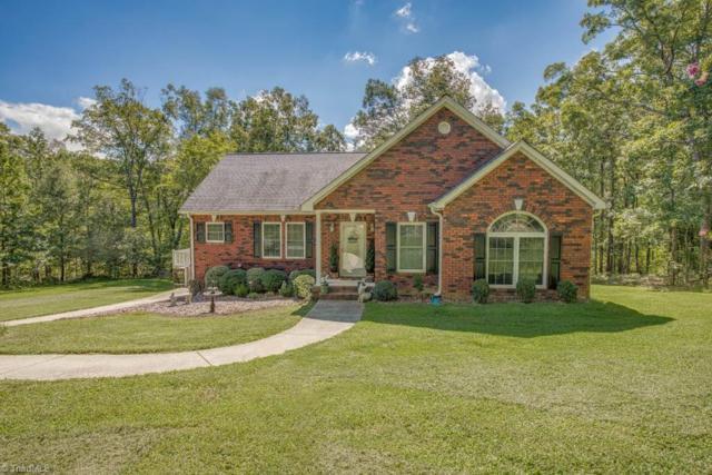273 Healing Springs Drive, Denton, NC 27239 (MLS #901691) :: HergGroup Carolinas