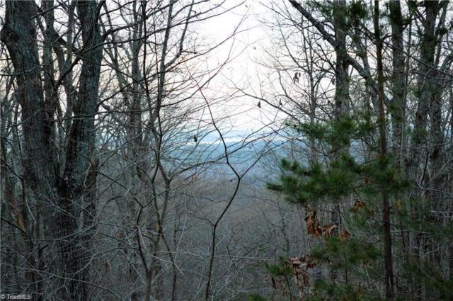 466 Pinnacle Trail, Denton, NC 27239 (MLS #901966) :: HergGroup Carolinas