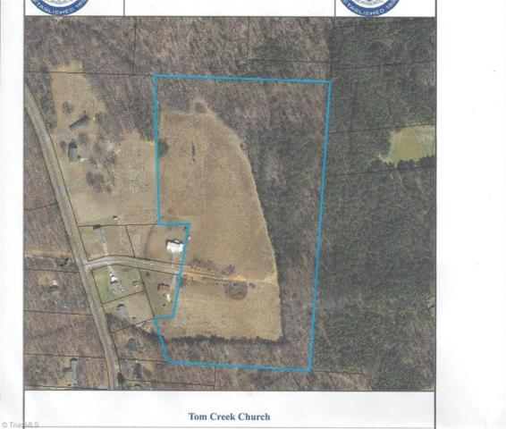 0 Toms Creek Church Road, Denton, NC 27239 (MLS #904728) :: Kristi Idol with RE/MAX Preferred Properties