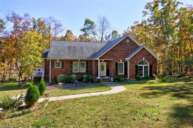 273 Healing Springs Drive, Denton, NC 27239 (MLS #909804) :: Kristi Idol with RE/MAX Preferred Properties
