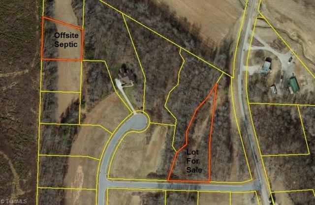 853 Southwood Drive, Colfax, NC 27235 (MLS #911238) :: Kristi Idol with RE/MAX Preferred Properties