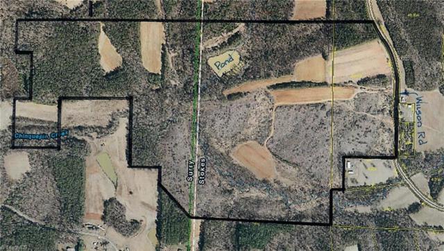1331 Wilson Road, Pilot Mountain, NC 27041 (MLS #914563) :: Kristi Idol with RE/MAX Preferred Properties