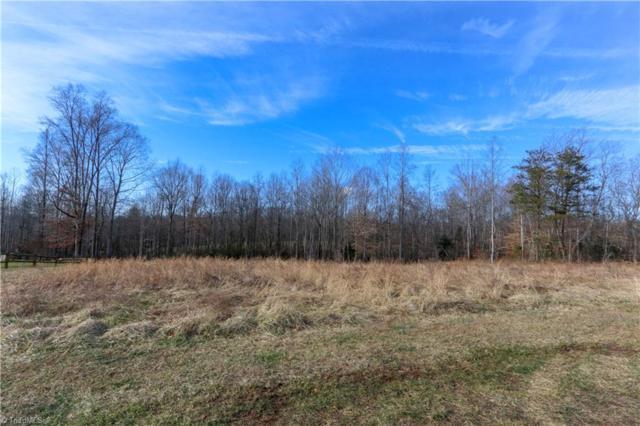 1025 Shenandoah Trail, Boonville, NC 27011 (MLS #915772) :: Kristi Idol with RE/MAX Preferred Properties