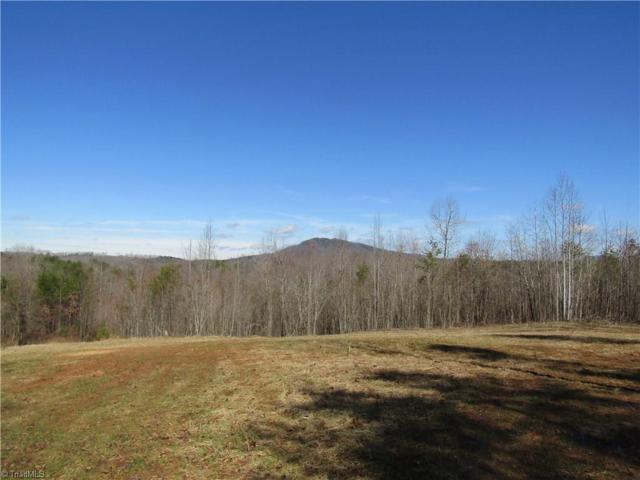 7 Sandy Ridge Trail, Pinnacle, NC 27043 (MLS #918993) :: Kristi Idol with RE/MAX Preferred Properties