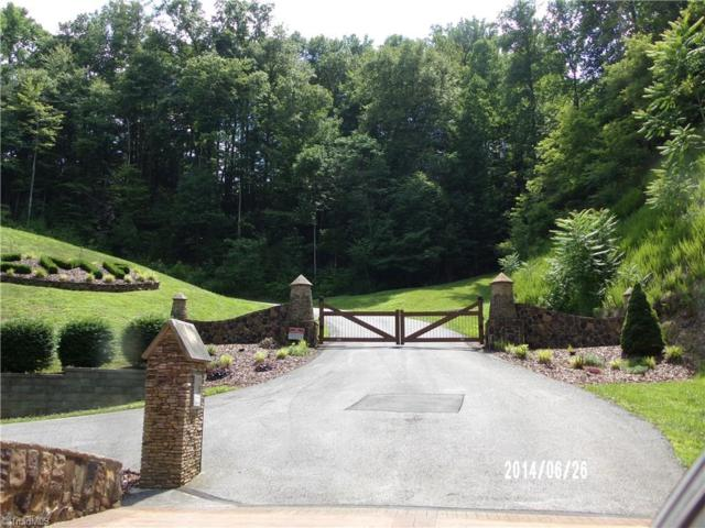 0 Chestnut Mountain Farms Parkway, Mcgrady, NC 28649 (MLS #922486) :: Kristi Idol with RE/MAX Preferred Properties