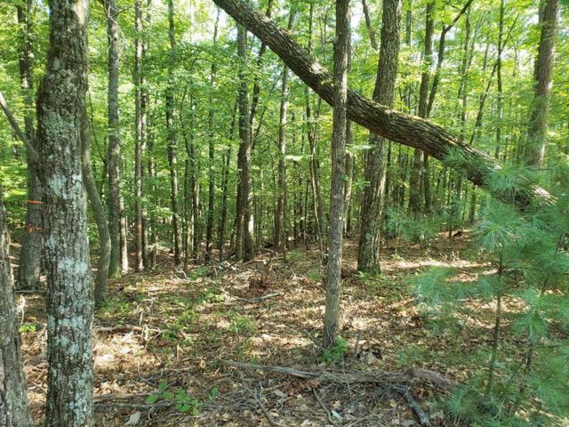 0 Pine Burr Drive, Purlear, NC 28665 (MLS #922872) :: Kristi Idol with RE/MAX Preferred Properties