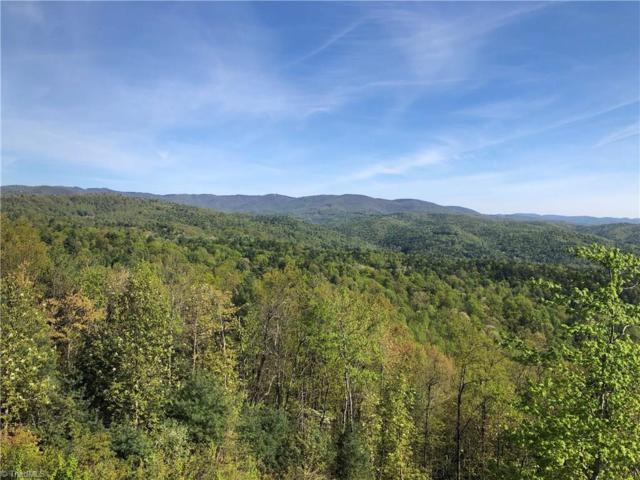 469 Bobcat Mountain Road, Purlear, NC 28665 (MLS #929665) :: HergGroup Carolinas | Keller Williams