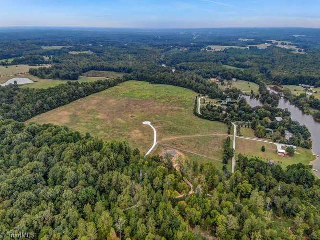 1 Henry Meadows Lane, Cedar Grove, NC 27231 (MLS #951454) :: Ward & Ward Properties, LLC