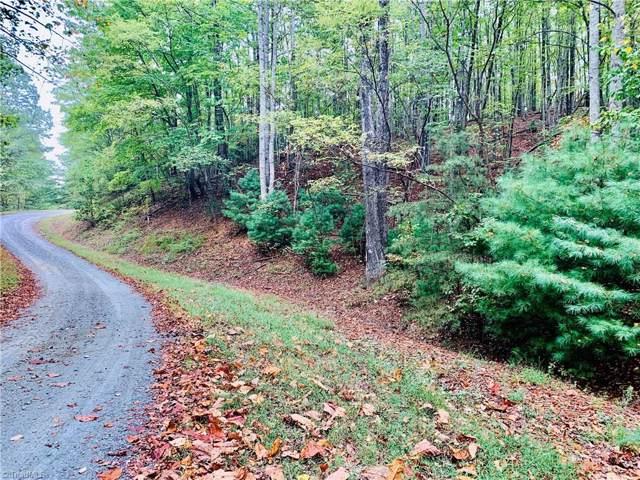 229 Deer Run, Purlear, NC 28665 (MLS #951693) :: Ward & Ward Properties, LLC