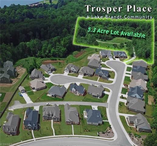 6214 Bedstone Drive, Greensboro, NC 27455 (#952540) :: Premier Realty NC