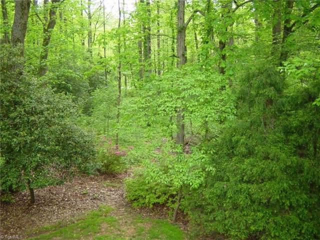5 Forest Drive #5, Wilkesboro, NC 28697 (MLS #954030) :: Kim Diop Realty Group