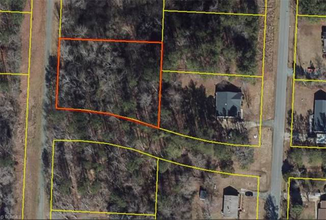 211 Dansby Drive, Gibsonville, NC 27249 (#955179) :: Mossy Oak Properties Land and Luxury
