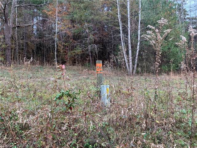 0 Fish Dam Creek Road Shoe, Millers Creek, NC 28651 (MLS #958634) :: Ward & Ward Properties, LLC