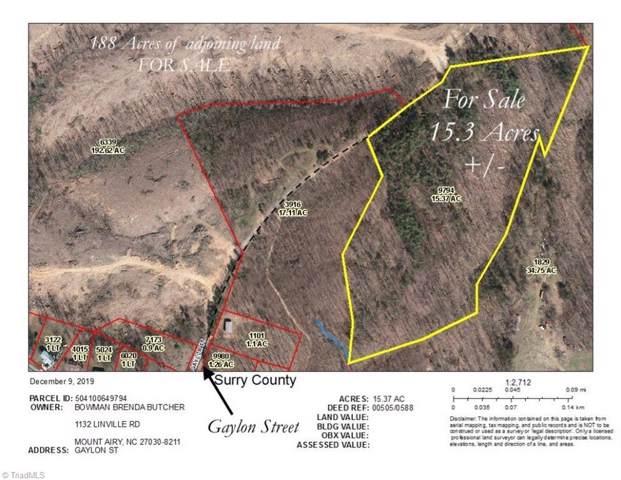 15 Gaylon Street, Mount Airy, NC 27030 (MLS #960128) :: Ward & Ward Properties, LLC