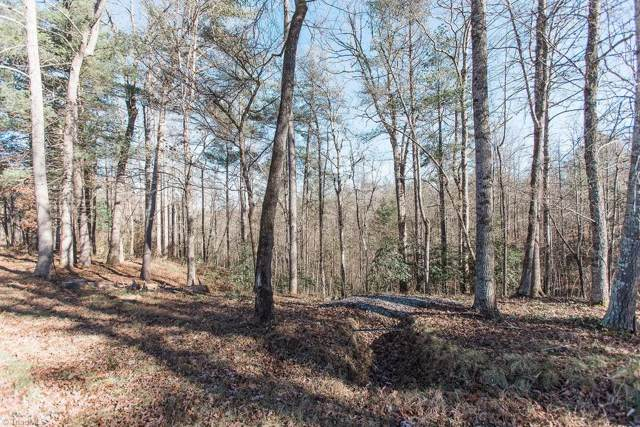 21 Triple Cove Drive, Wilkesboro, NC 28697 (#961766) :: Mossy Oak Properties Land and Luxury