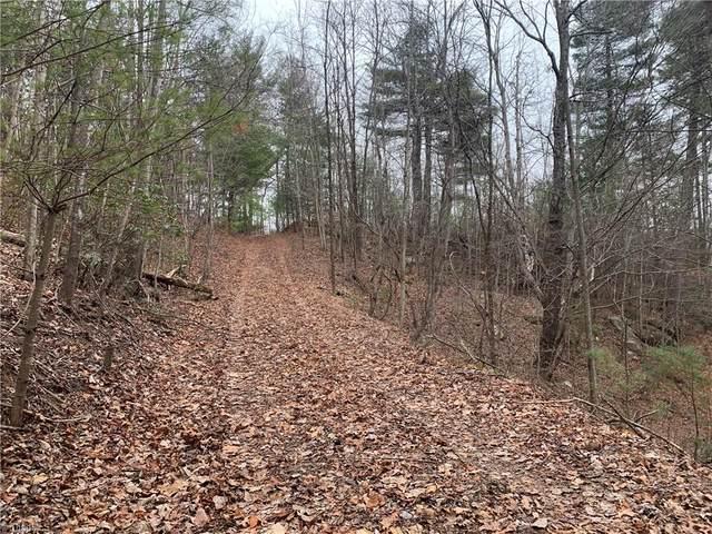63 Riverview Road, Millers Creek, NC 28651 (MLS #965756) :: Ward & Ward Properties, LLC