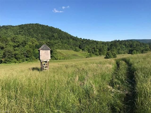 1220 Elk Creek Darby Road, Ferguson, NC 28624 (MLS #966211) :: HergGroup Carolinas | Keller Williams
