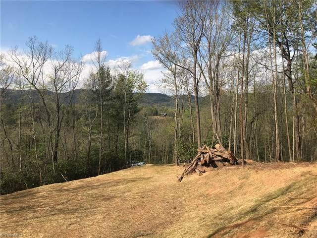 25 Green Pasture Lane, Ferguson, NC 28624 (#973004) :: Mossy Oak Properties Land and Luxury